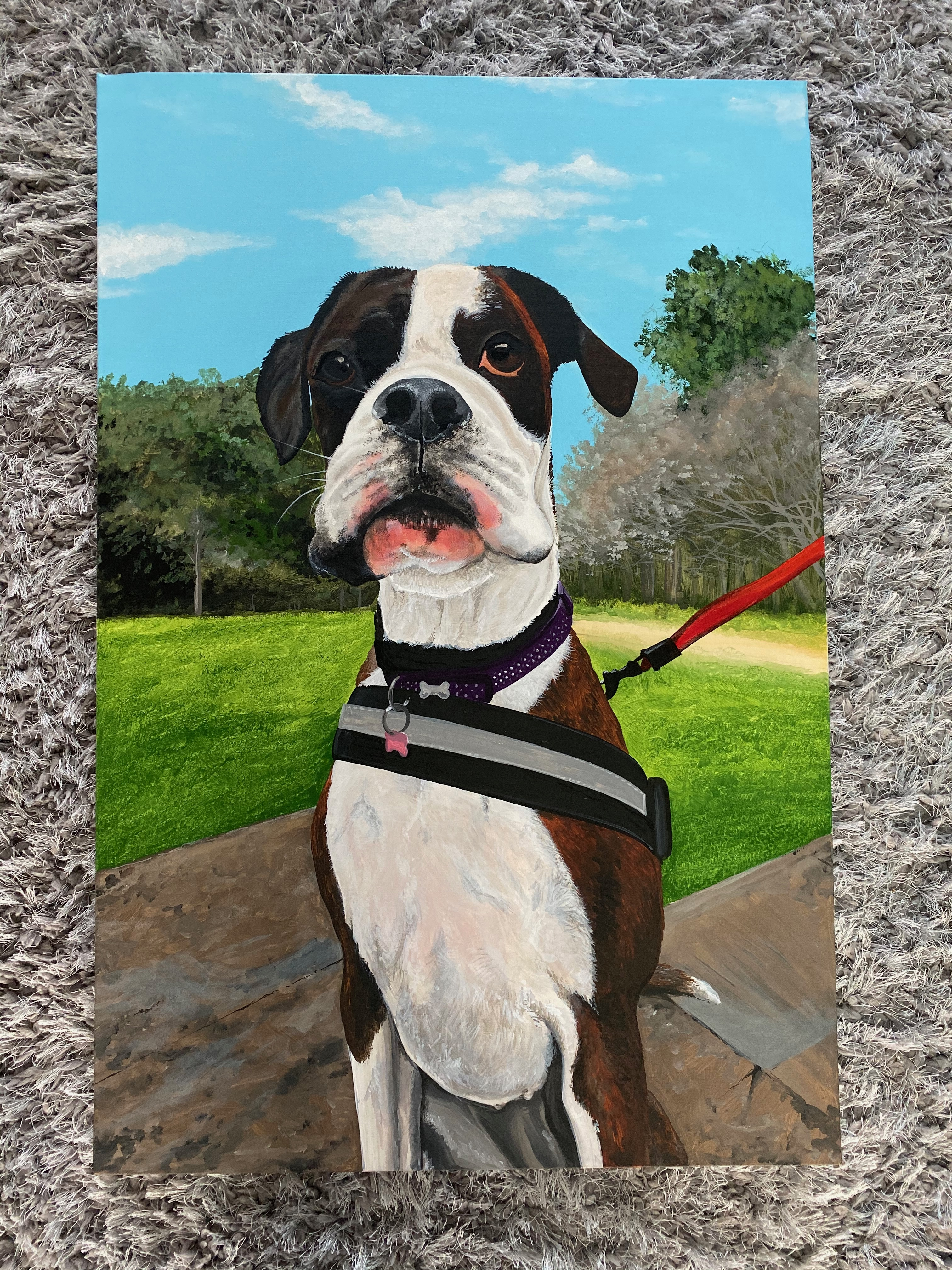 Boxer Dog Canvas 3'x2'