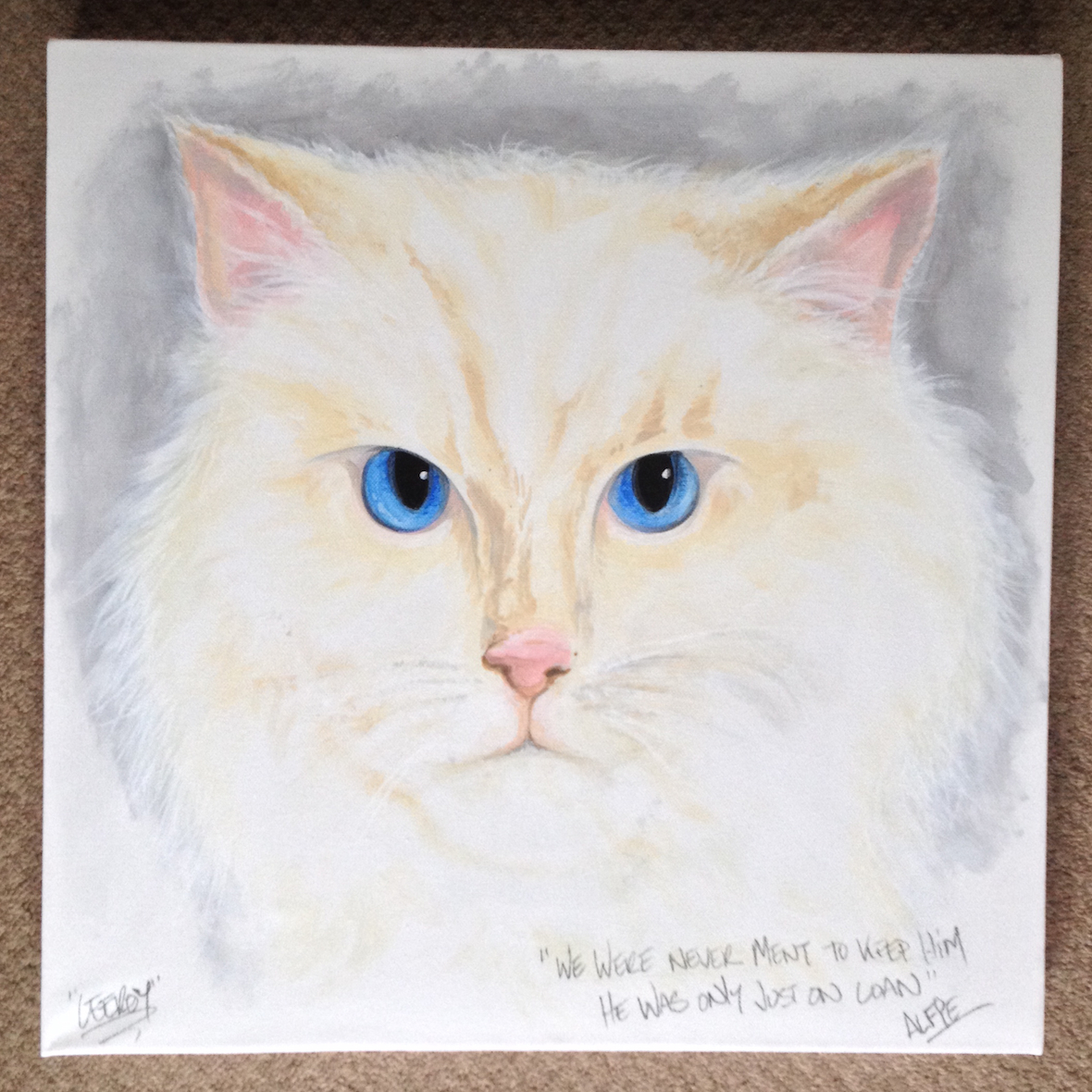 Cat ~ Pet Portrait