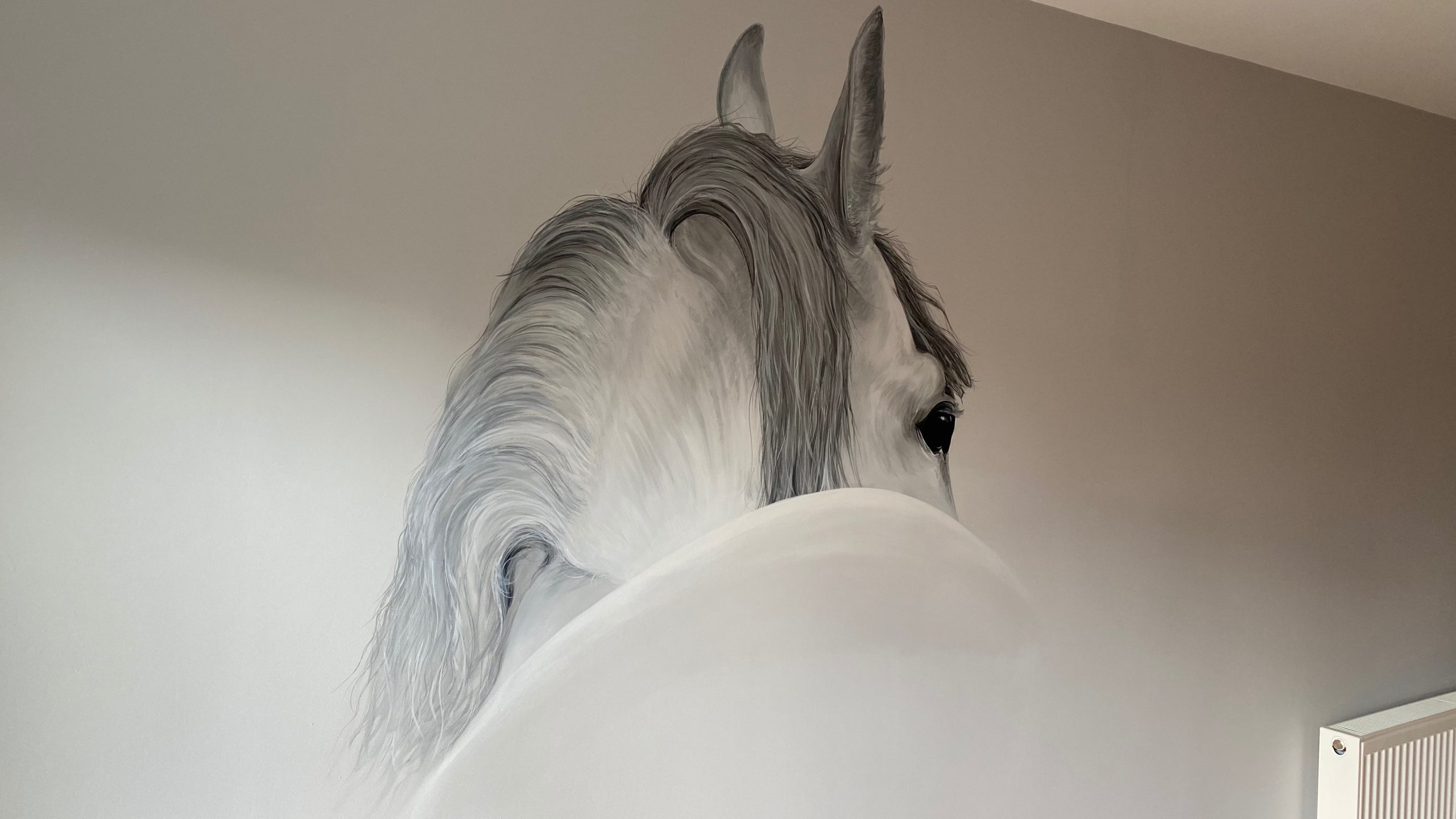 Horse Feature wall